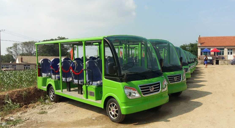 14座燃油观光车案例